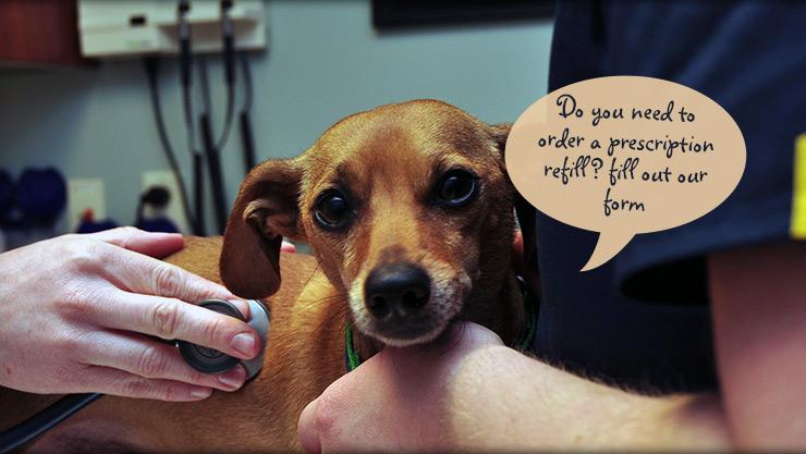 Cornerstone Animal Hospital prescription request